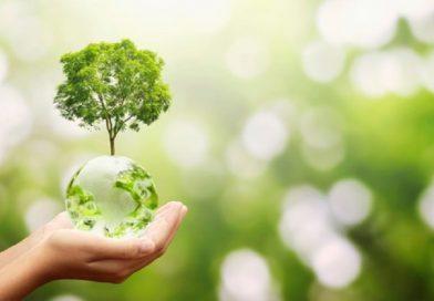 Em Taquaritinga (SP): ETEC Dr. Adail Nunes da Silva conquista novo curso de Meio Ambiente